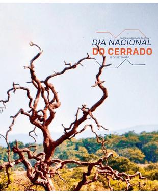 Dia Nacional do Cerrado, o bioma tupiniquim abrangente e importante para o meio ambiente