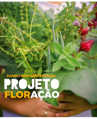 Por uma cidade mais verde: vamos conhecer o projeto FlorAção de Campo Bom?