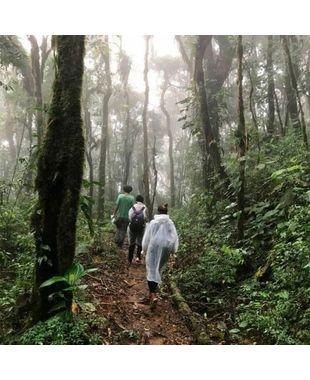 Que tal fazer uma trilha do Rio Grande do Sul ao Rio de Janeiro?