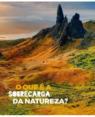 Sustentabilidade Beeton: o que é a sobrecarga da natureza?