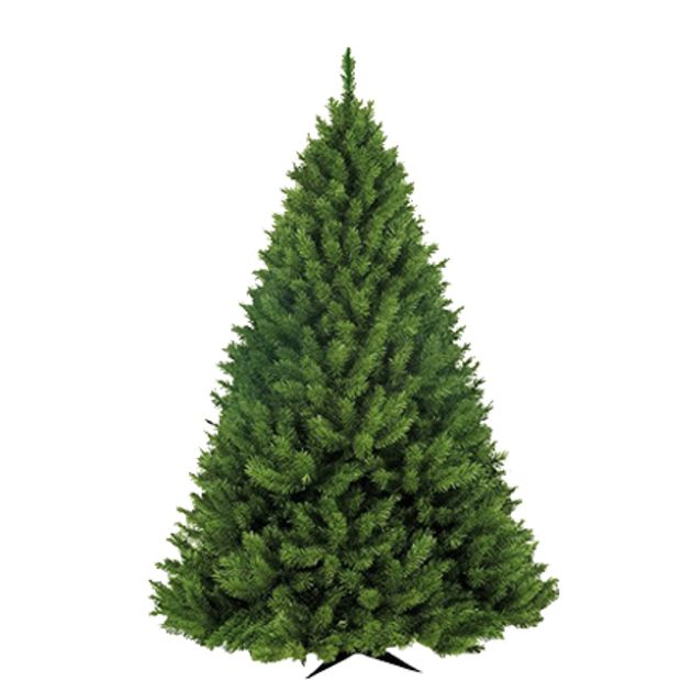 Árvore Bavarian Pine 1,50m