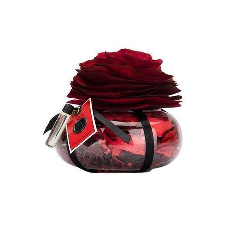 Intensidade Vidro com Rosas Perfumadas