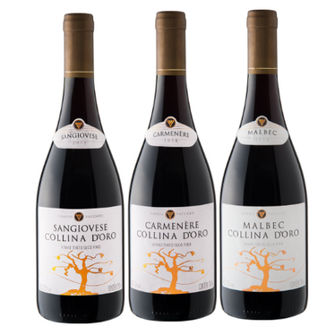 Kit Vinhos Tintos Collina D'oro