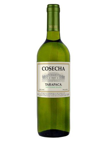 Cosecha Tarapacá Sauvignon Blanc