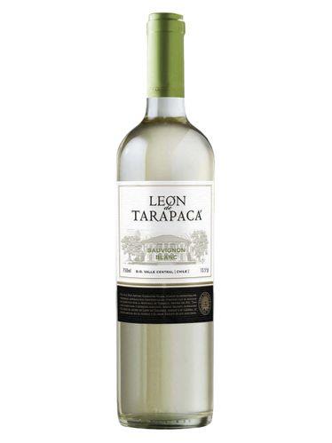 Leon de Tarapacá Sauvignon Blanc