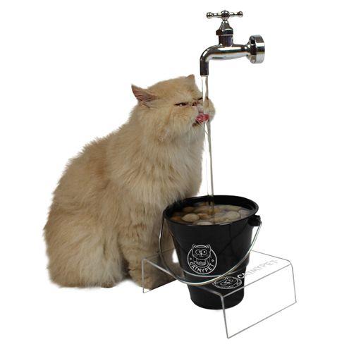 Bebedouro para Gatos Magicat Edição Especial Black Catmypet 220V